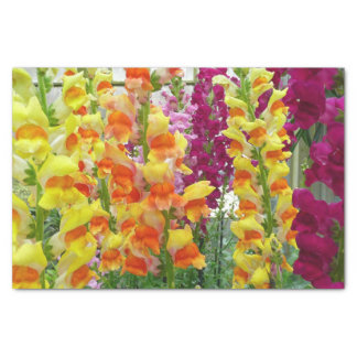 Snapdragons Colorful Floral Tissue Paper