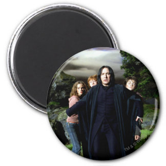 Snape Hermoine Ron Harry Magnet