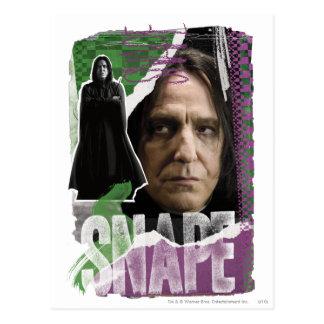 Snape Postcard