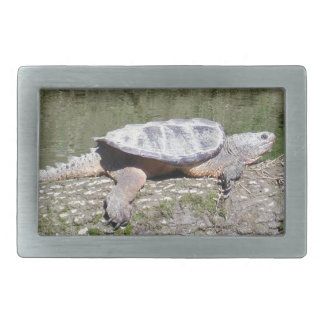 Snapping Turtle Belt Buckle