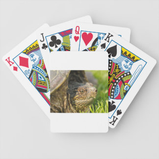 Snapping Turtle Bicycle Playing Cards