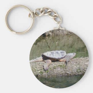 Snapping Turtle Keychain