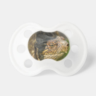 Snapping Turtle Pacifier