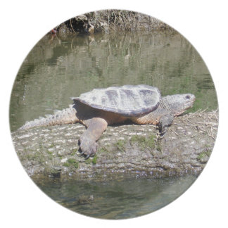 Snapping Turtle Plate