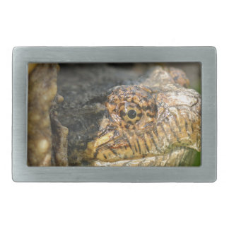 Snapping Turtle Rectangular Belt Buckle
