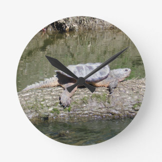 Snapping Turtle Round Clock