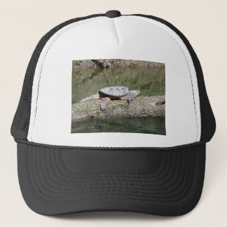 Snapping Turtle Trucker Hat