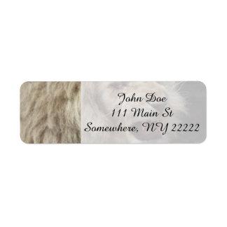 Snarling White Lion Return Address Label