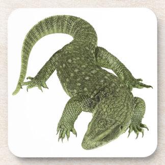 Sneaky Galapagos Iguana Coaster