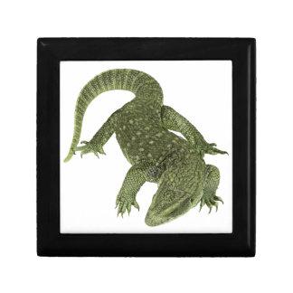 Sneaky Galapagos Iguana Gift Box
