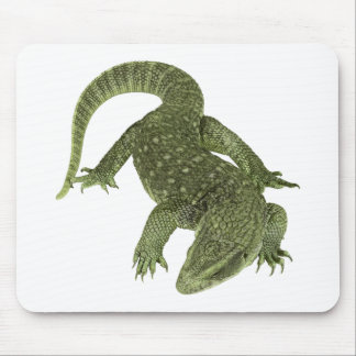 Sneaky Galapagos Iguana Mouse Pad