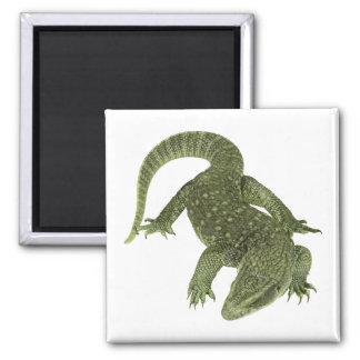 Sneaky Galapagos Iguana Square Magnet