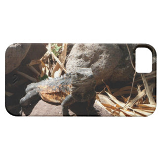 Sneaky Iguana iPhone 5 Cover