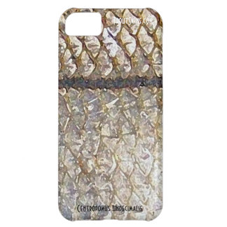 Snook Cell Phone Case