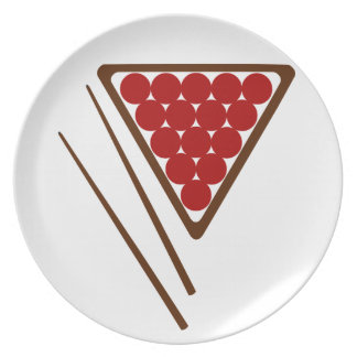 Snooker Rack and Snooker Cues Plate