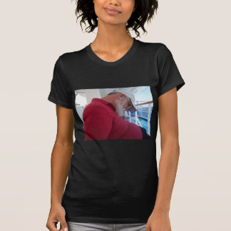 Snoozing Cruiser T-Shirt