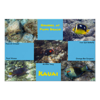 Snorkel at Poipu Beach Poster