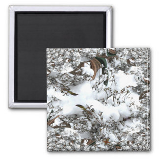 Snow Abstract Magnet