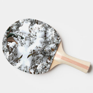 Snow Abstract Ping Pong Paddle