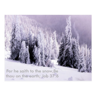 Snow and bible verse postcard