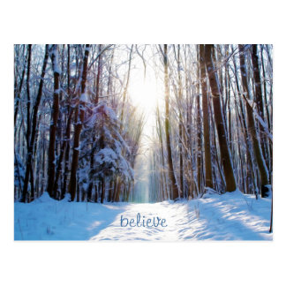 Snow and Trees with Sunbeams Postcard