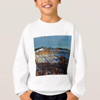 snow at bryce sweatshirt