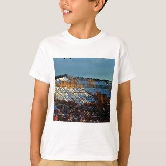 snow at bryce T-Shirt