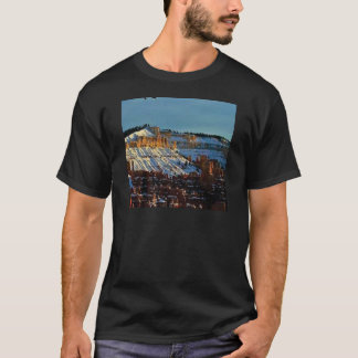 snow at bryce T-Shirt