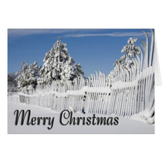 Snow Battered Snow Ski Fence Christmas Card