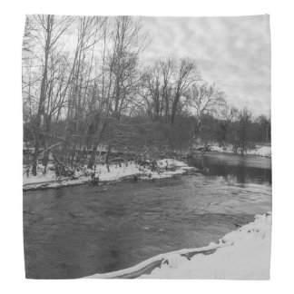 Snow Beauty James River Grayscale Bandana