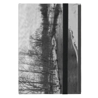 Snow Beauty James River Grayscale iPad Mini Cover