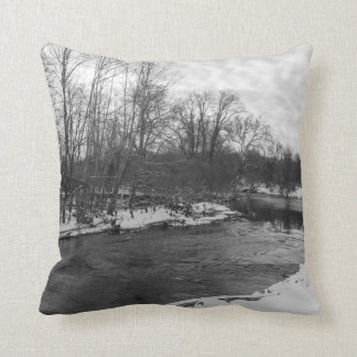 Snow Beauty James River Grayscale Throw Pillow