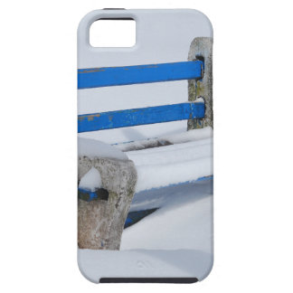 Snow Bench Case For The iPhone 5