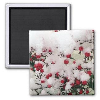 Snow Berries Magnet