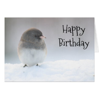 Snow bird on a winter day card