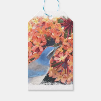 Snow Bird Pack Of Gift Tags
