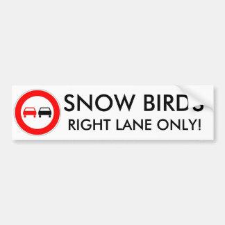 Snow Birds Bumper Sticker