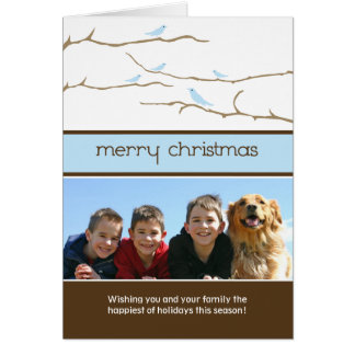 Snow Birds Merry Christmas Holiday Card (blue)