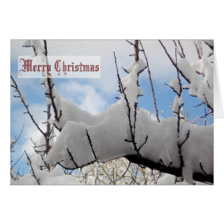 Snow Branch Christmas Card