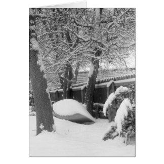 Snow Canoe Card