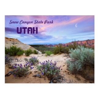 Snow Canyon State Park Utah Postcard