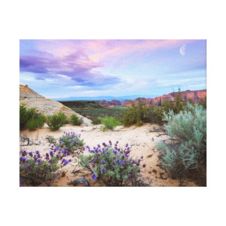 Snow Canyon Wildflowers Canvas Print