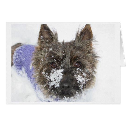 Snow! Card