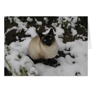 Snow Cat Greeting Card