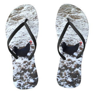 Snow chicken flip flops