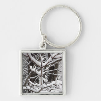 Snow-covered Branches Silver-Colored Square Keychain