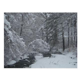 Snow Covered Brook Postcard