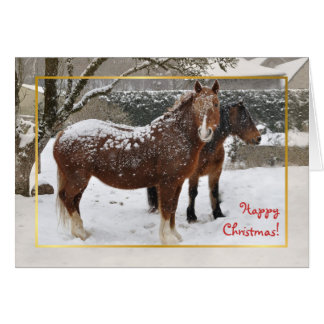 Snow covered horses Christmas Card
