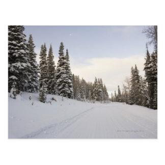 Snow-covered landscape postcard