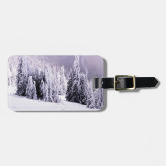 Snow covered luggage tag